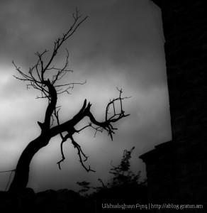 Հարբած մթնշաղ, լուսանկար սև ու սպիտակ